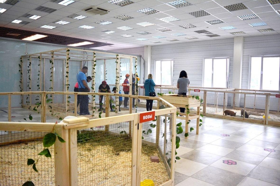 Кто такие Бонни и Клайд, или Почему стоит посетить контактный зоопарк в Новополоцке?, фото-9