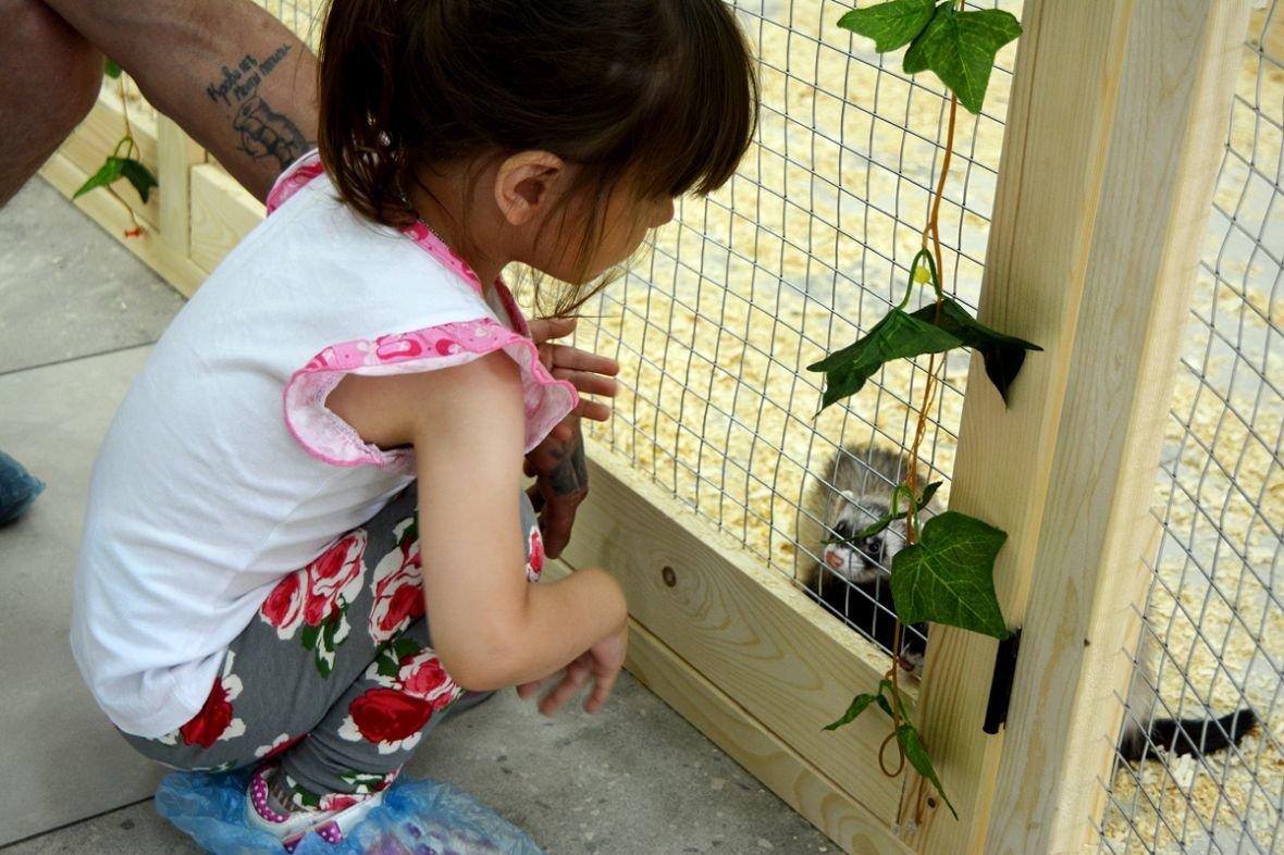 Кто такие Бонни и Клайд, или Почему стоит посетить контактный зоопарк в Новополоцке?, фото-12