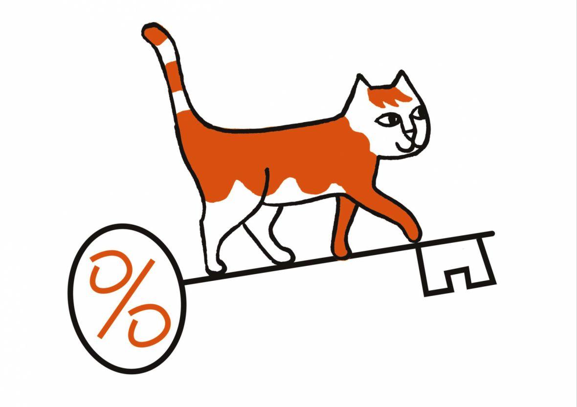 kat (1)