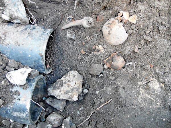 Фотофакт: в центре Полоцка обнаружены человеческие останки, фото-1