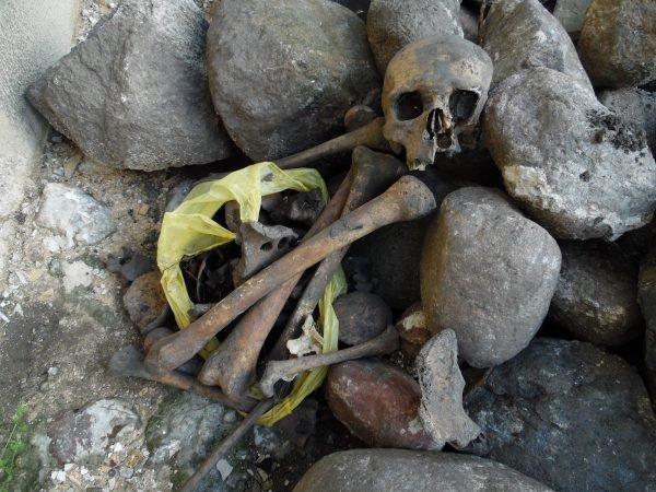Фотофакт: в центре Полоцка обнаружены человеческие останки, фото-5