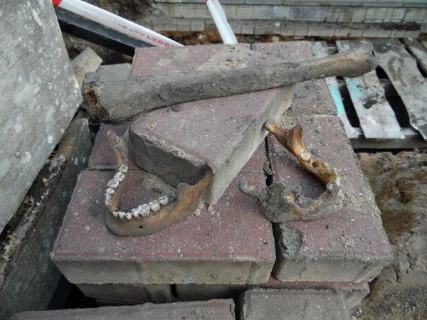 Фотофакт: в центре Полоцка обнаружены человеческие останки, фото-2