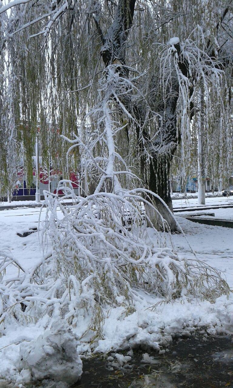 Авдеевка оделась в зимний наряд (ФОТОФАКТ), фото-1