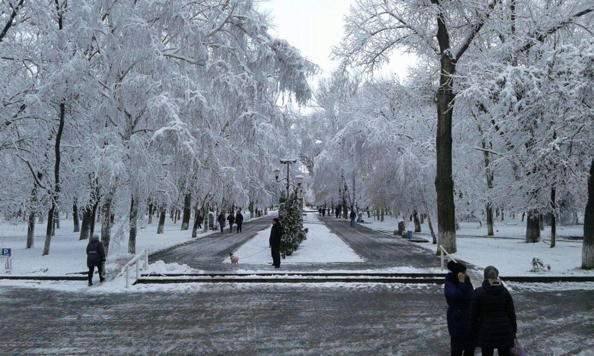 Авдеевка оделась в зимний наряд (ФОТОФАКТ), фото-3