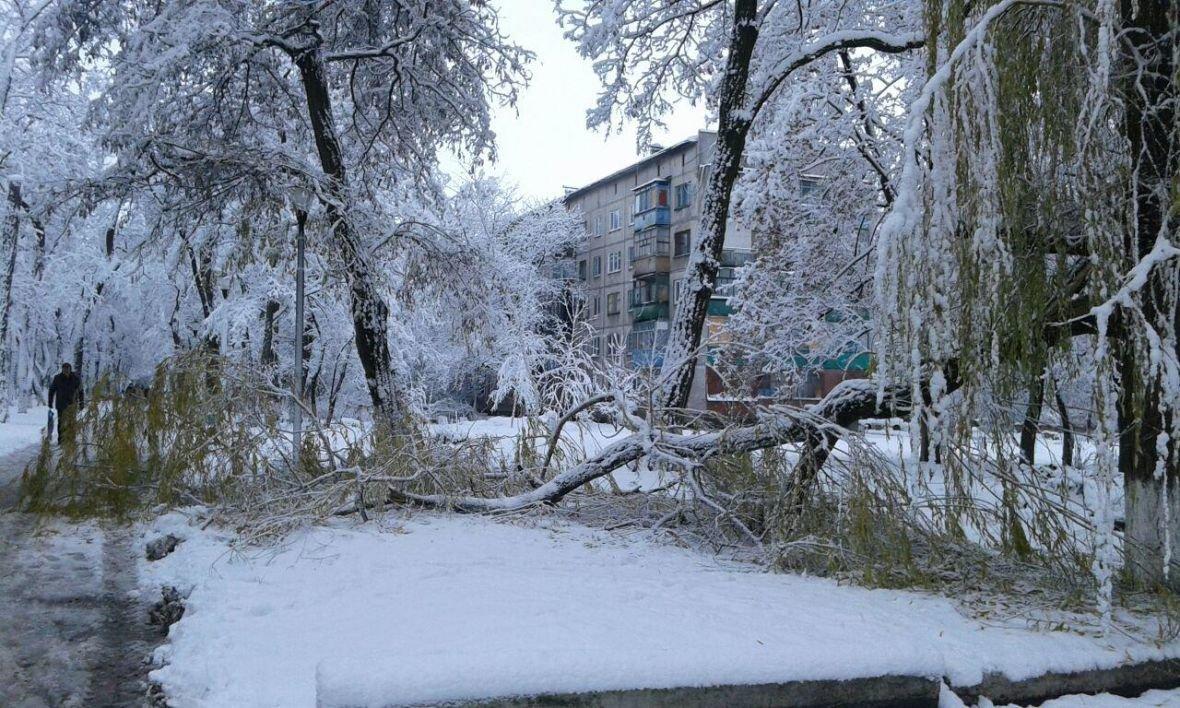Авдеевка оделась в зимний наряд (ФОТОФАКТ), фото-2
