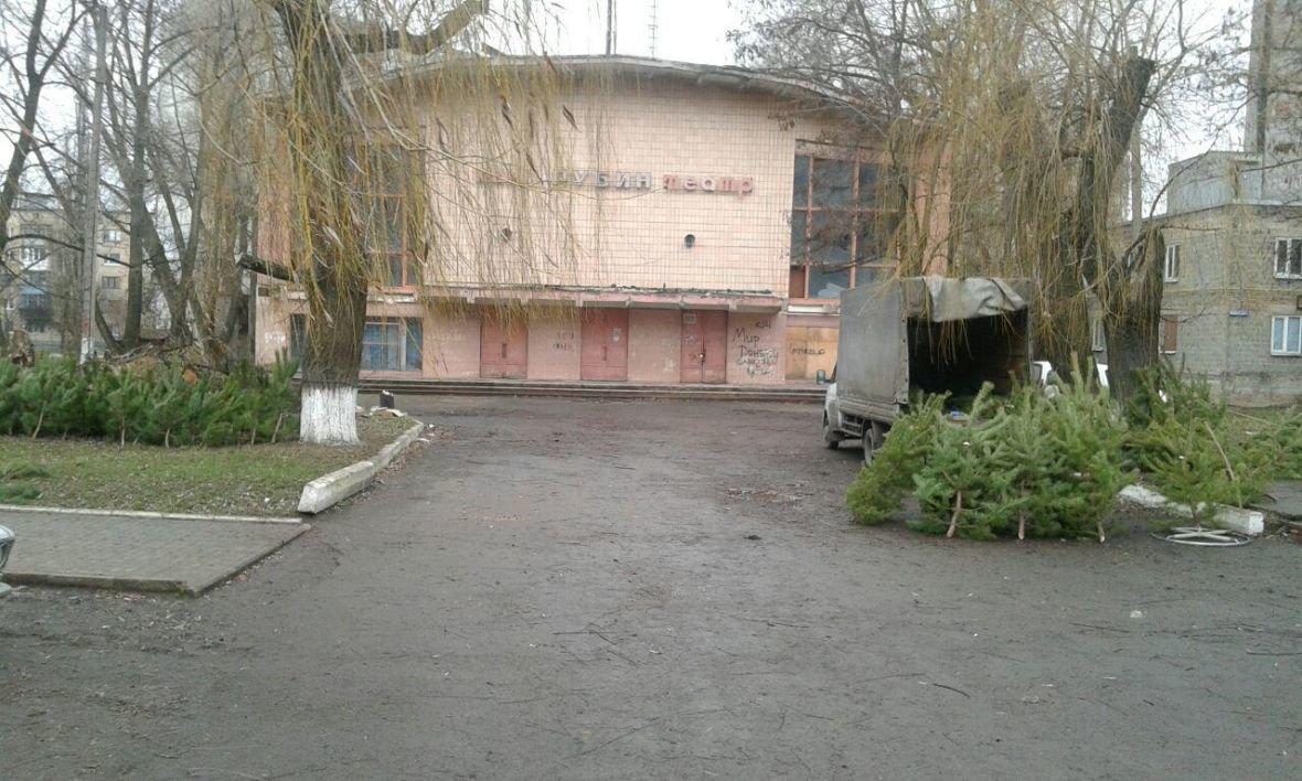 Сколько стоит новогодняя елка в Авдеевке?, фото-1