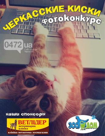 киски1