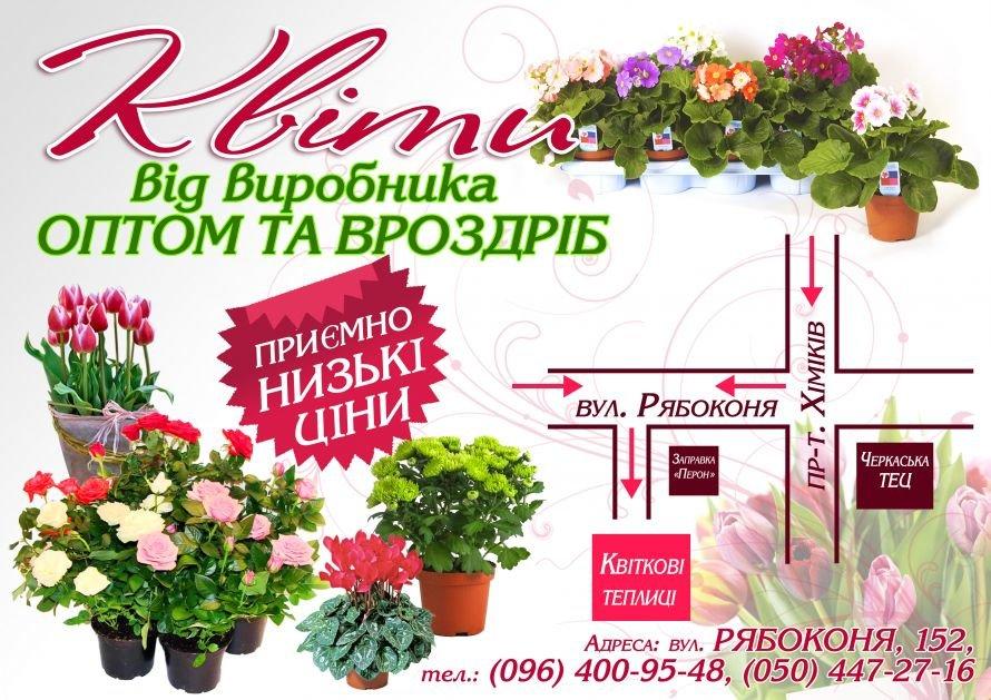 цветы_маршрутка