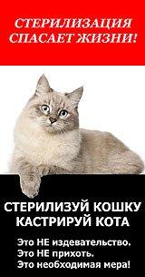 steriliz_160