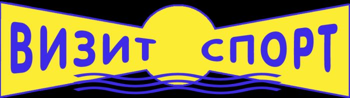 ЛоготипВизит