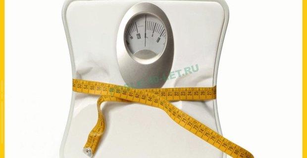 весы 620x320
