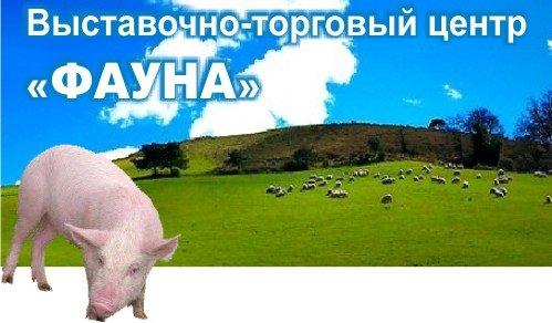 AgroSvit-logo