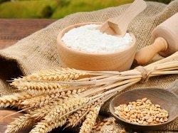 Комбикорма и зерно