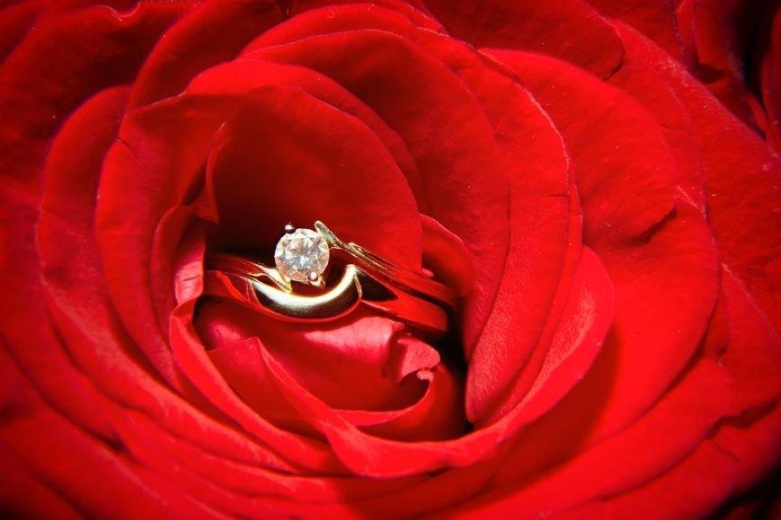 red-rose-1450056_960_720