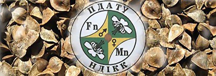 ndikk-logo