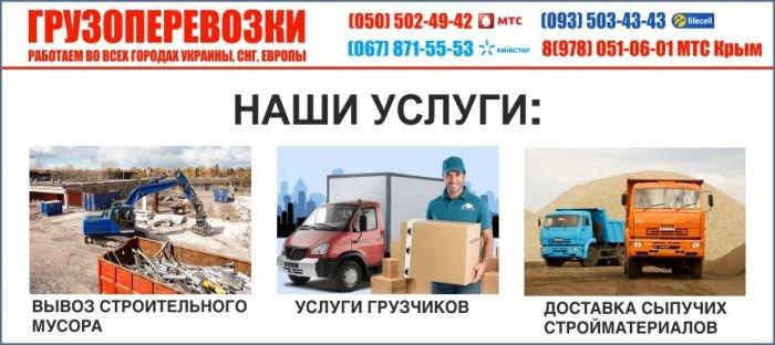 446477436_stor_3_6