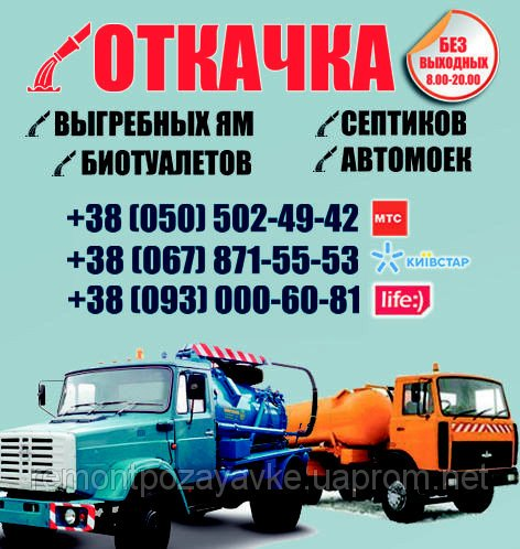 513310771_w640_h640_ukr
