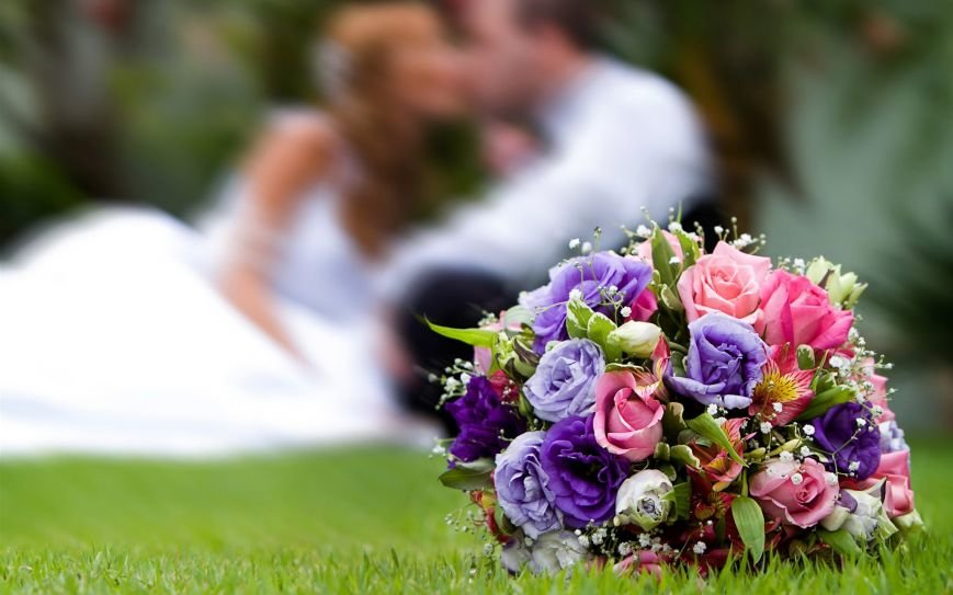 все для свадьбы в Запорожье 2016
