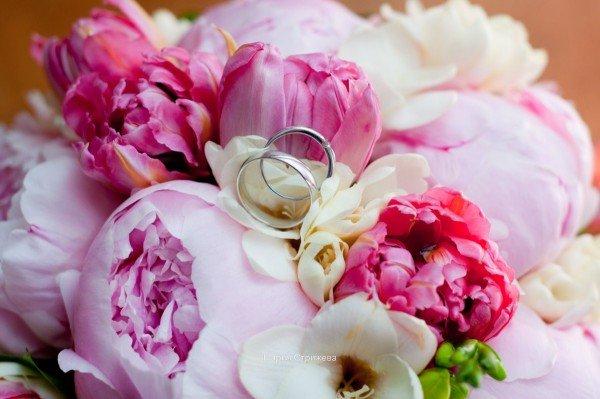 Цветы это то, что нас радует в этой жизни