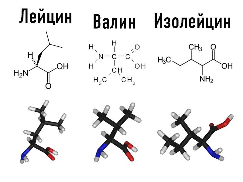 0_valin,leicin,isoleicin