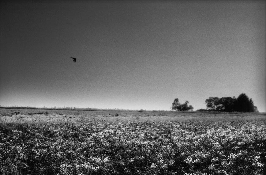 Hang-glider above the barren field