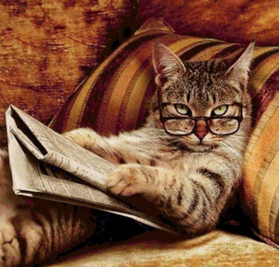 кот на диване с газетой-2