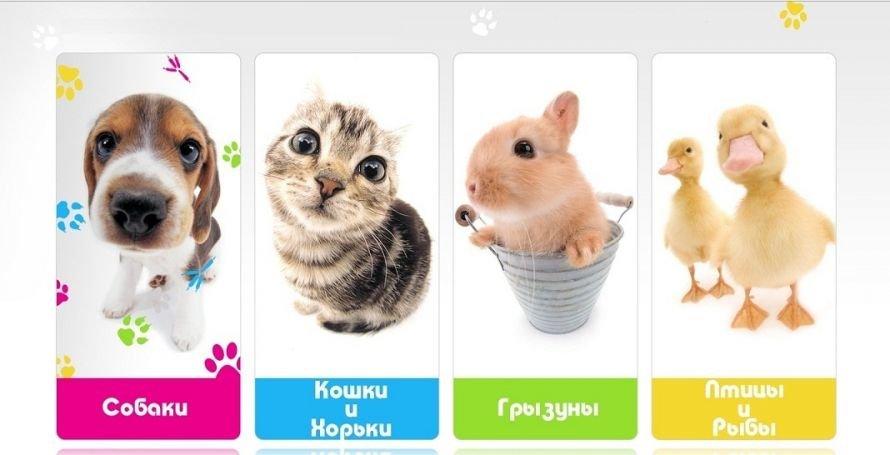 купить корма и зоотовары зооветцентр в Кременчуге