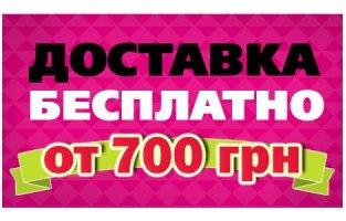 dostavka2-313x200