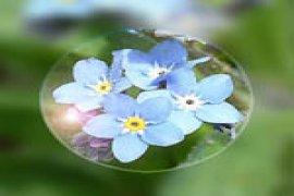 142_Punktal_1.5_unco_4bfe68e8479b8.jpg.th