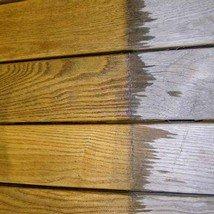 uhod-za-drevesinoy