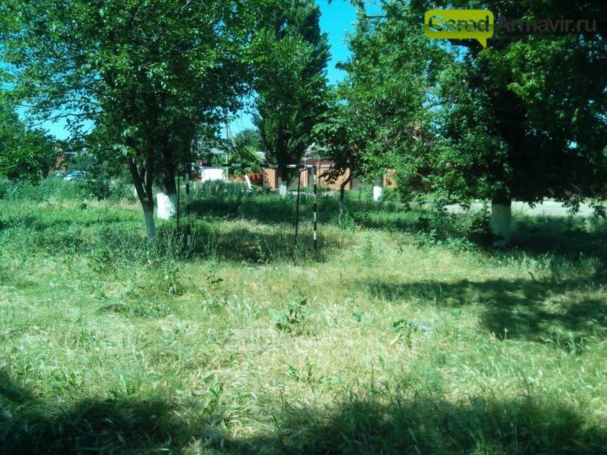 покос травы 4