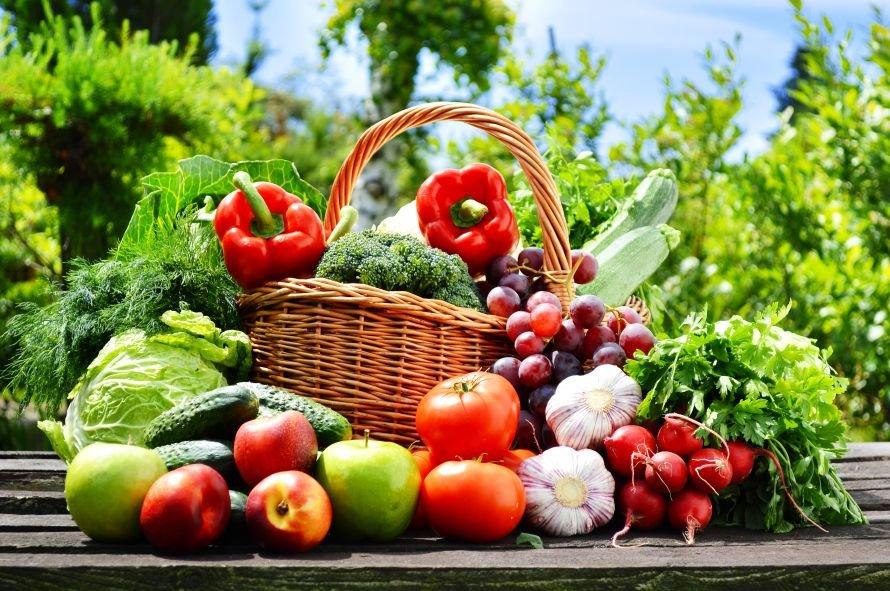 овощи-с-огорода