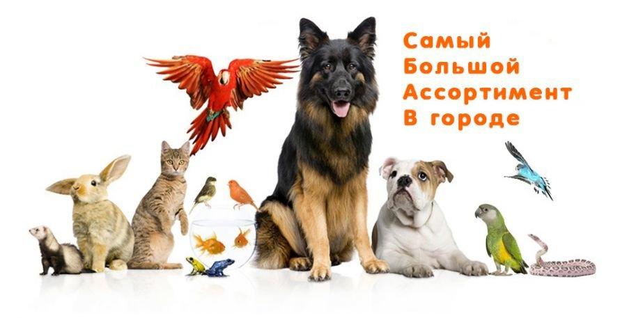 1358420835_promo_960x550