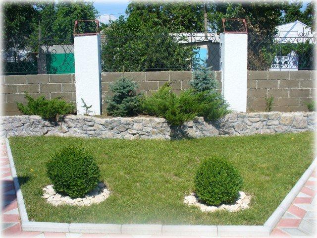 Подпорная стенка из гранита служит клумбой для хвойных растений и дополняет трапецию газона