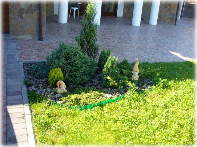 Композиция из миниатюрных хвойников приукрасила газон.А милые гномы внесли  идилию сказки.