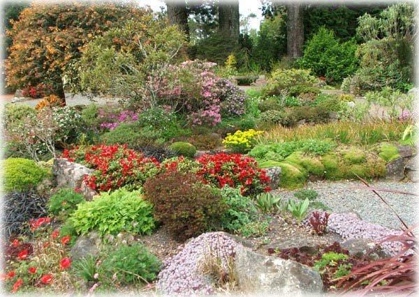 rock-larnach-garden