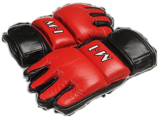 Перчатки Микс Файт2