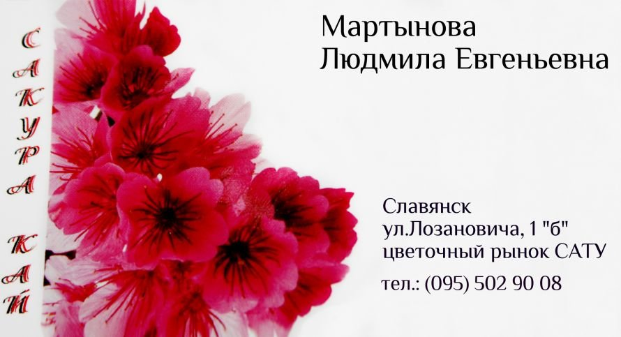 IMG_2489
